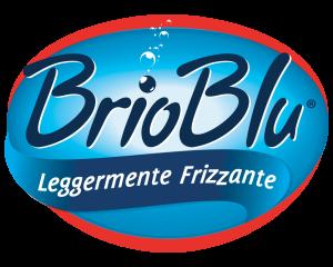 logo_brioblu